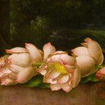 Still life - Flowers (Part 2)
