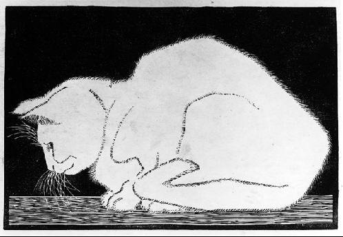 M. C. Escher, White Cat II, 1919